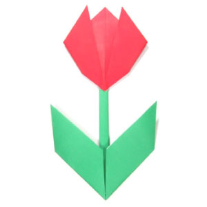 easy origami tulip