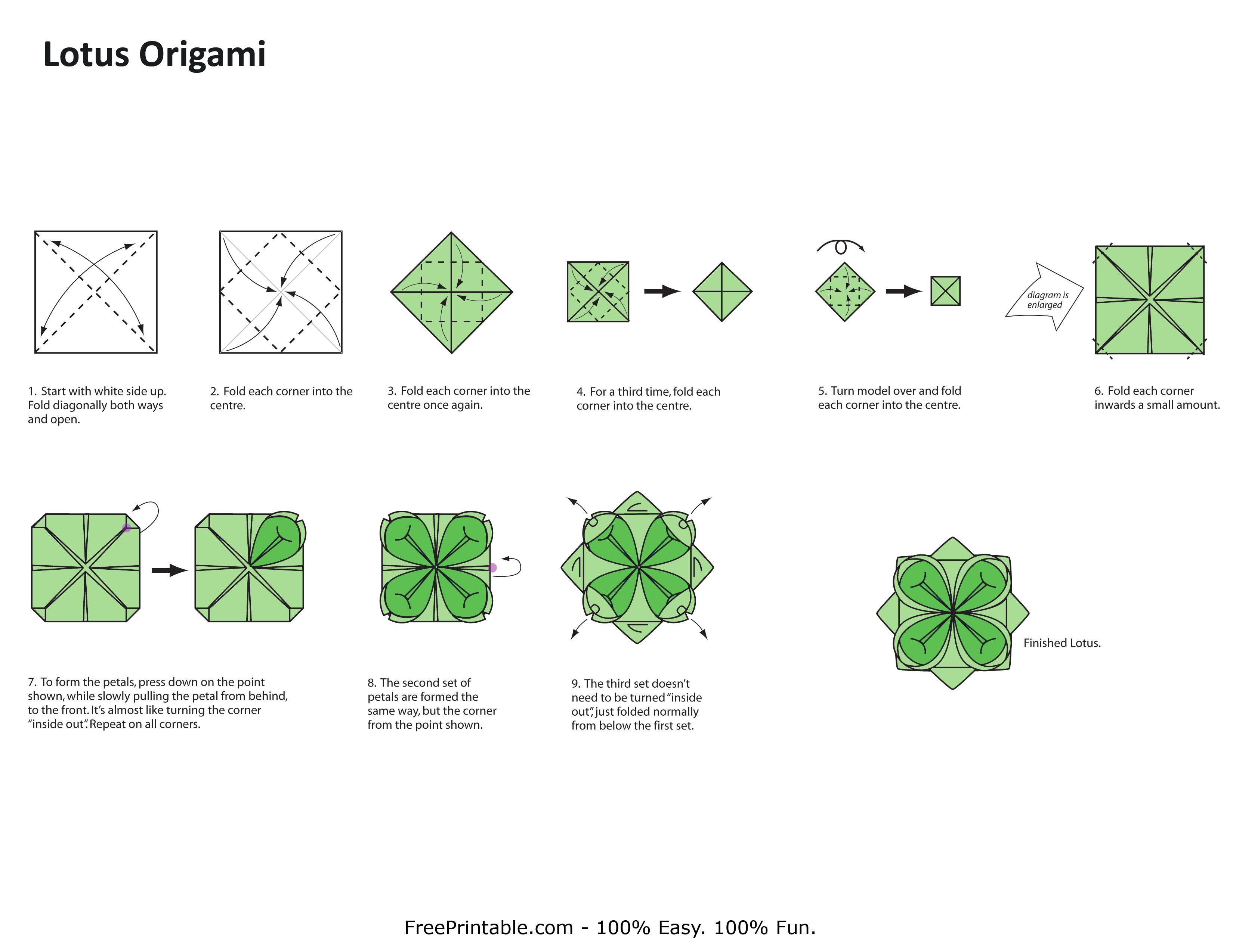 lotus origami step by step