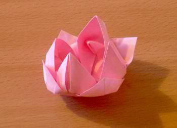 nénuphar en origami