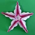 Origami sea star