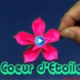 Origamie fleur coeur d'étoile