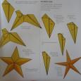 Starfish origami